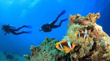Diving Antalya Kas